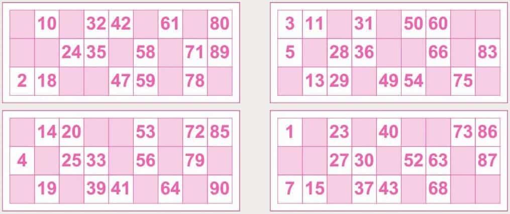 Descubre los Cartones Bingo Tombola 90 en Casino Casa
